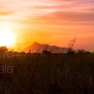 Hills at Sunrise