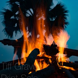 Palm and Fire